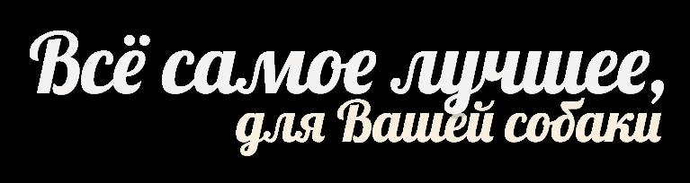slogan-ru-voljeras